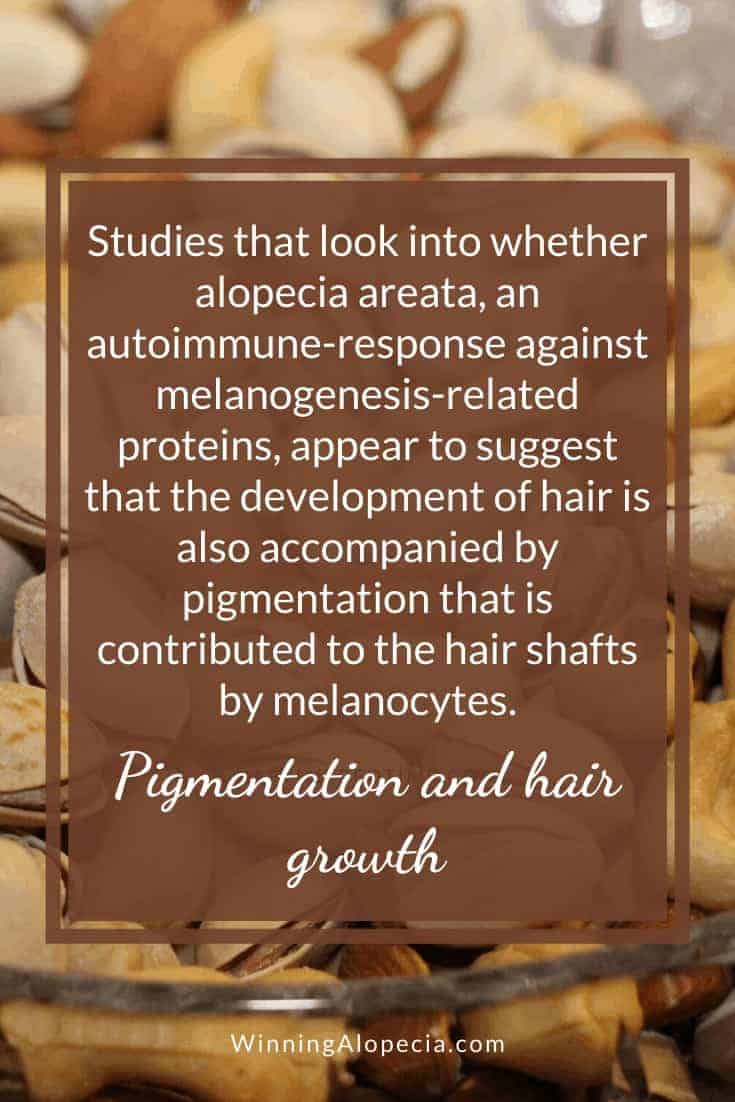 Exploring melanin to support hair pigmentation and growth on Winning Alopecia Pinterest