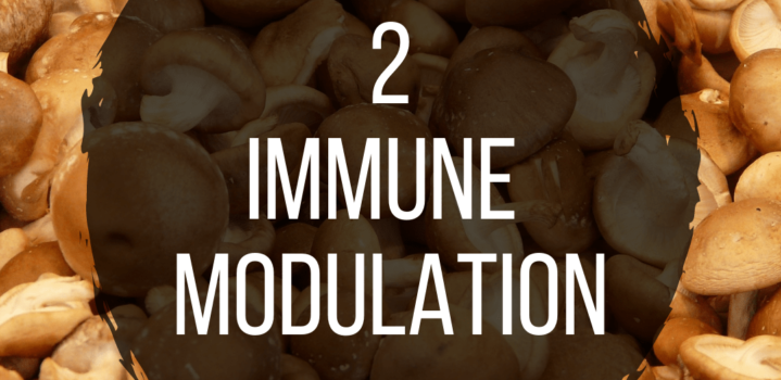 Step 2 – Immune Modulation for Alopecia Recovery