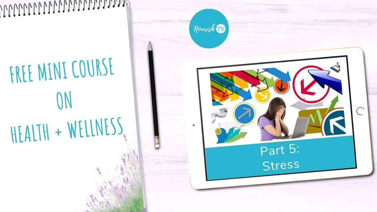How Modern Day Stress Impairs Your Immune System in Fighting Off Infection on Nourish TV Healthy Living