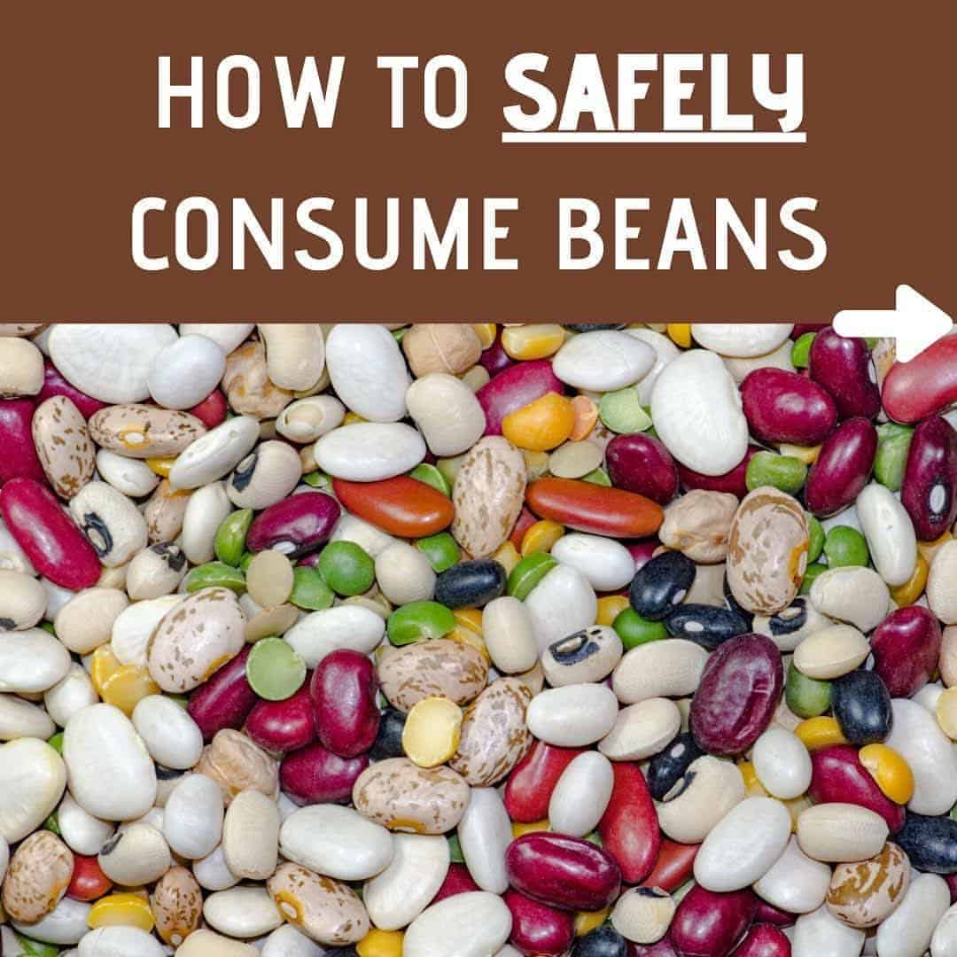 How to safely consume beans if you have Alopecia